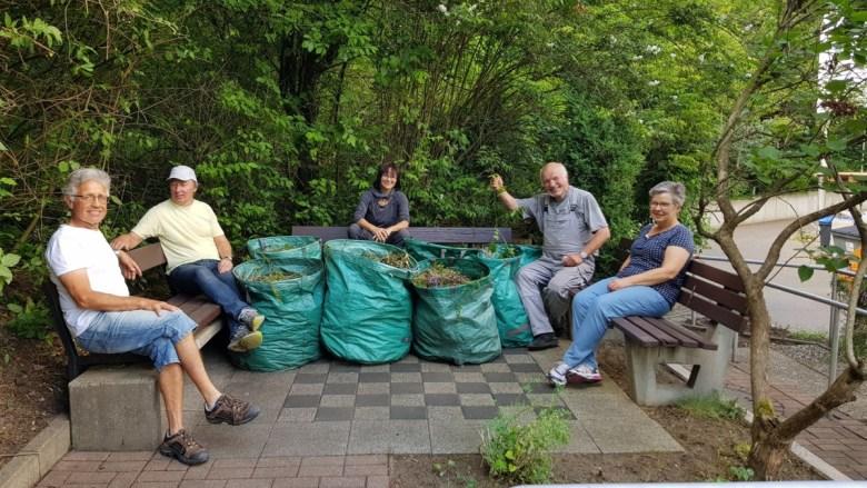 Gartenarbeit im Therapiegarten