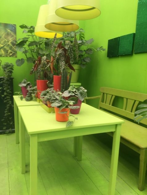 LAGA 2020 Kamp-Lintfort, das grüne Zimmer in der Blumenhalle, Foto: m.h.