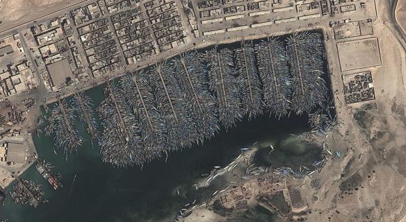 Massive Non-Human Graveyards Around The World Will Amaze You