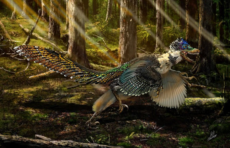 125 Million-Year-Old Dinosaur with Wings Found Perfectly Preserved