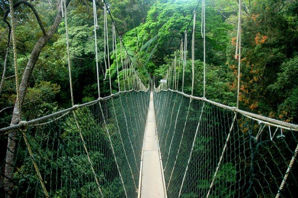 Dangerous Bridges Around The World (6)