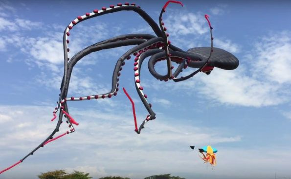 Gigantic Octopus Kite With Tentacles