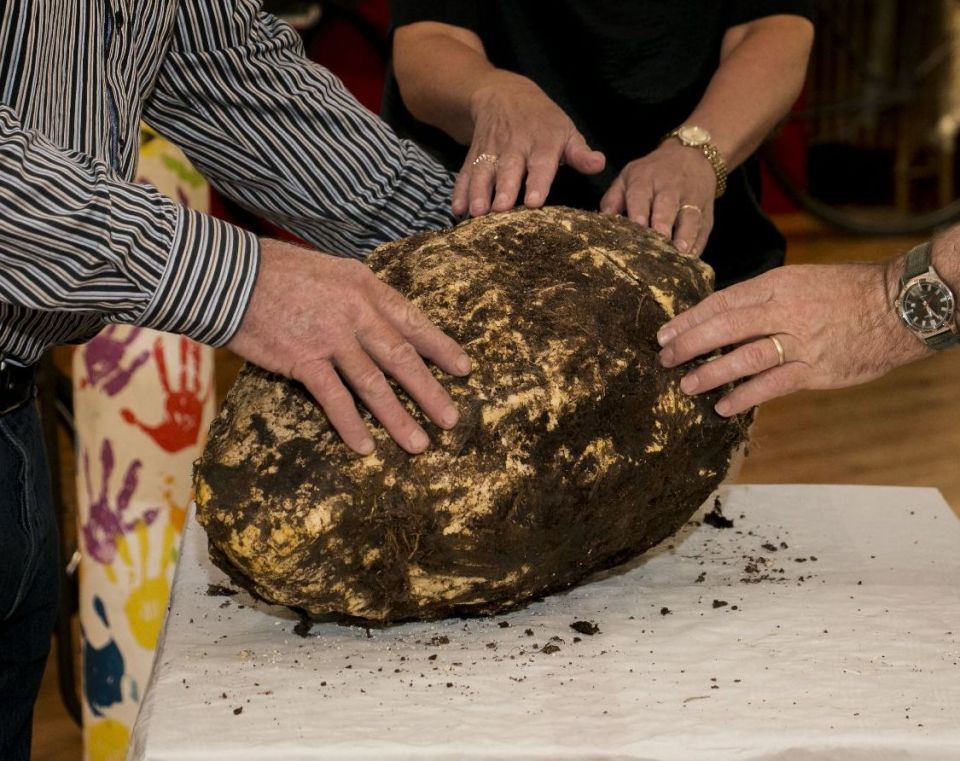 2,000-Year-Old Hunk of Butter