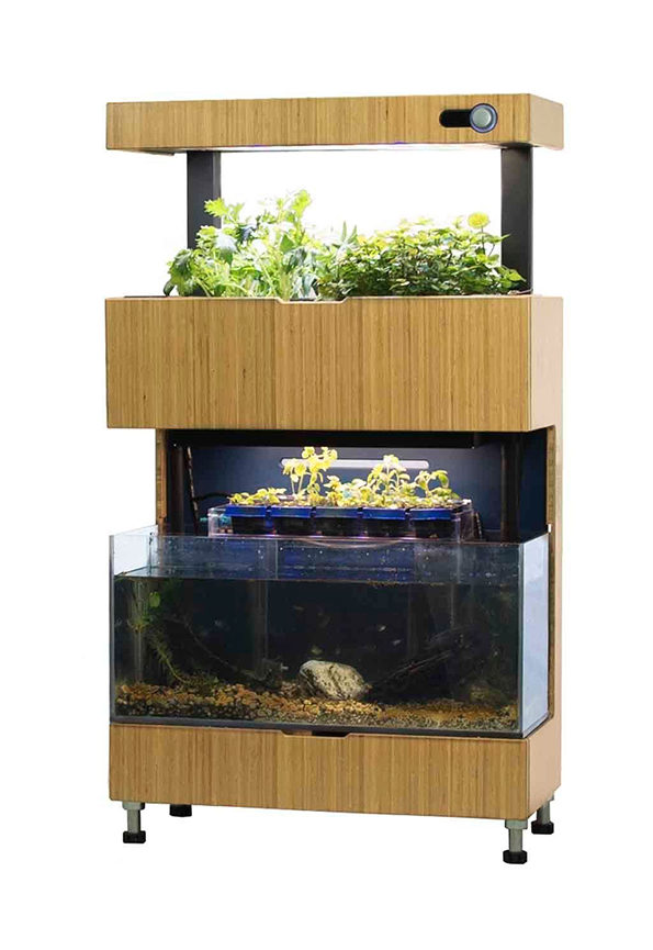 Self-Sustaining Garden And Aquarium Combo