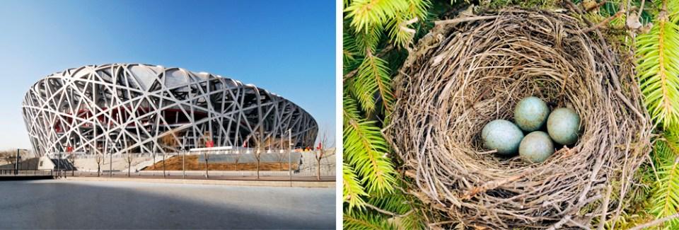 Beijing National Stadium