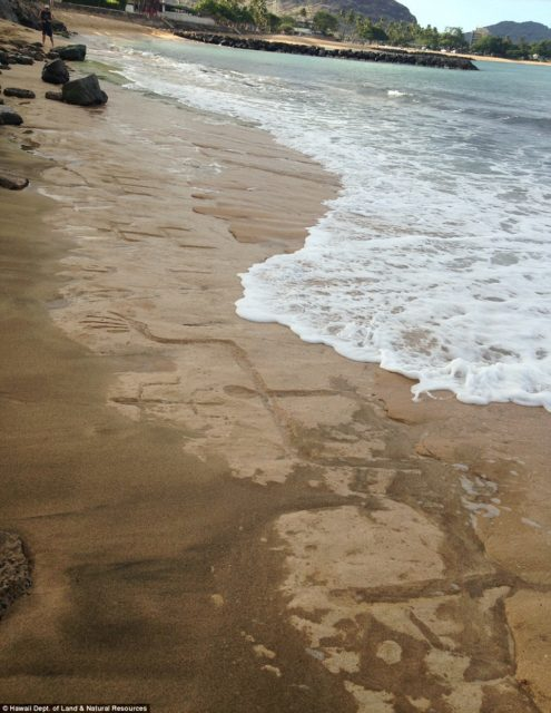 Petroglyphs on Hawaii Beach