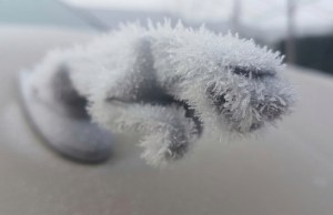 Jaguar Hood Ornament Grows a Furry Ice Coat