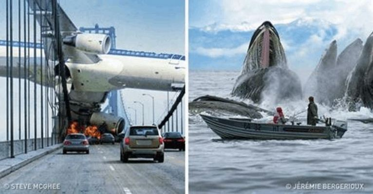 The 35 Most Perfectly Timed Photos Ever!