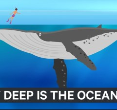 How Deep The Ocean Really Is