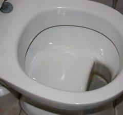 German Toilet Design