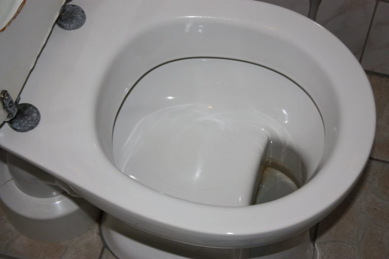 German Toilet Design