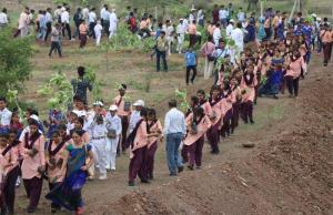India Has Planted 66 Million Trees