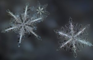 Why Snowflakes Are Always Flat