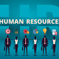 Top 5 Must-Have HR Tools Every Company Needs