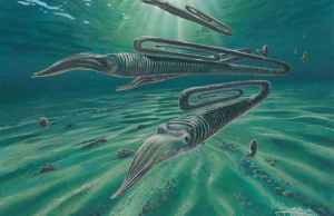 Prehistoric Squid-Like Creature