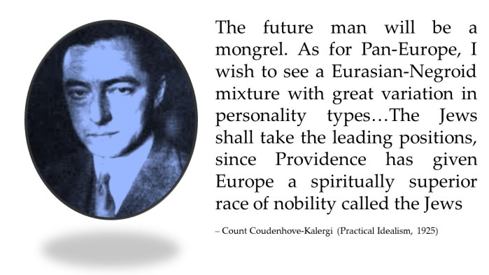Image result for Kalergi Practical Idealism