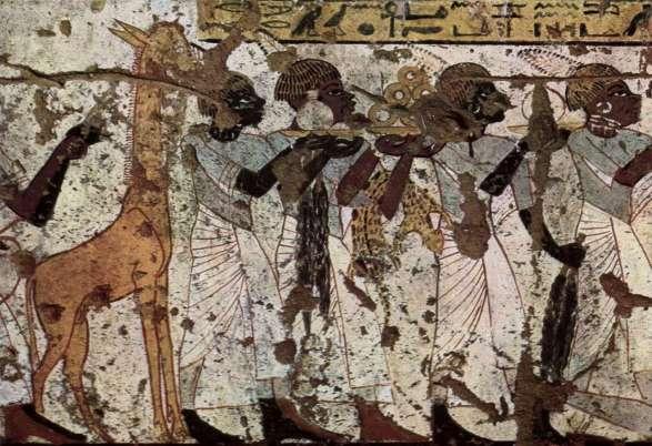 fresque présentant une girafe sur une tombe égyptienne datant du XIVe siècle avant J.-C.jpg