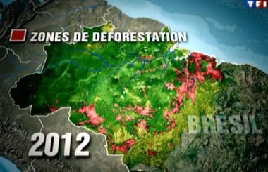 zone_deforestation_amazonie_2012