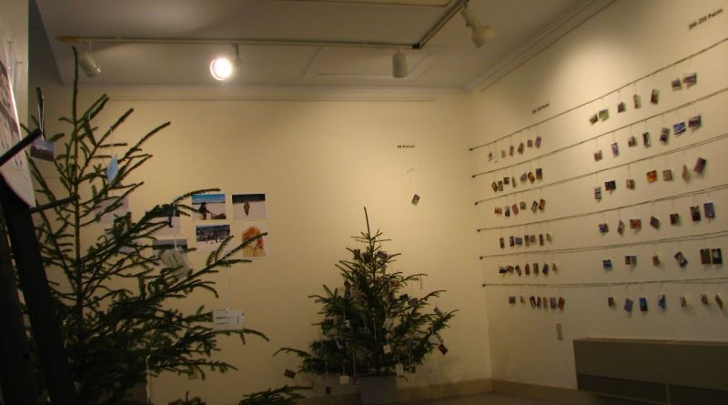 The 50 Paces Project Installation