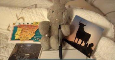 Travel Bunny in Ponferrada