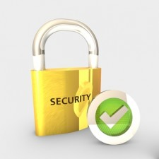 Interview mit Dolphin Secure