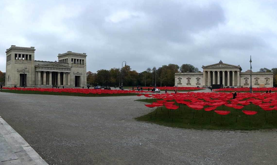 Mohnblumen am Königsplatz in München