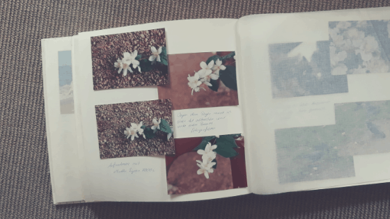Mein Fotoalbum mit Fotos von 1991 Fotografie bei schlechtem Wetter