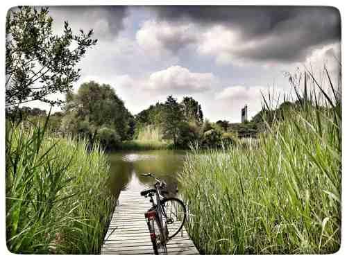 Der Grüttsee im Landschaftsparkt Grütt Lörrach
