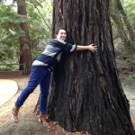 Lili hugging a redwood