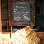 """Mary had a little _ and her _ was white as snow"" sign in front of a stall at Ardenwood Historic Farm, Fremont"