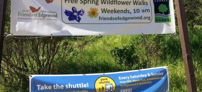 Banner advertising free wild flower walks at Edgewood Park