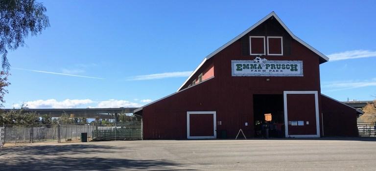 Emma Prusch Farm
