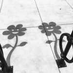 Lazy Daisies part of the Shadow Art series by Damon Belanger