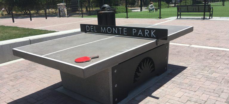 Ping pong table at Del Monte Park, San Jose