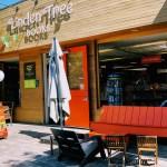 Front of Linden Tree Books, Los Altos