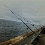 Fishing rods at Pacifica public pier.