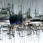Boats at Pillar Point, Half Moon Bay.