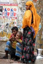 Family Yellow Jessore