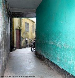 Green and Yellow Alley Jessore