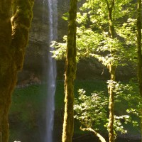 Rediscovering Oregon: Silver Creek Falls