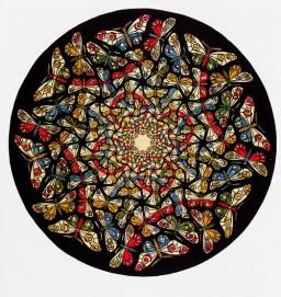 20080302-13. Escher. Farfalle