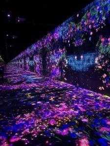 Tokyo Borderless Teamlab flower projections on floor, walls, everywhere!
