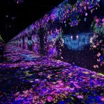 Tokyo Borderless Teamlab flower projections on floor, walls, everywhere!