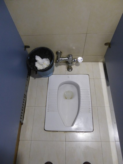Squatters predominate in China, but Western toilets exist