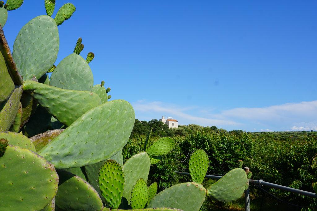 Laghi di Conversano Puglia