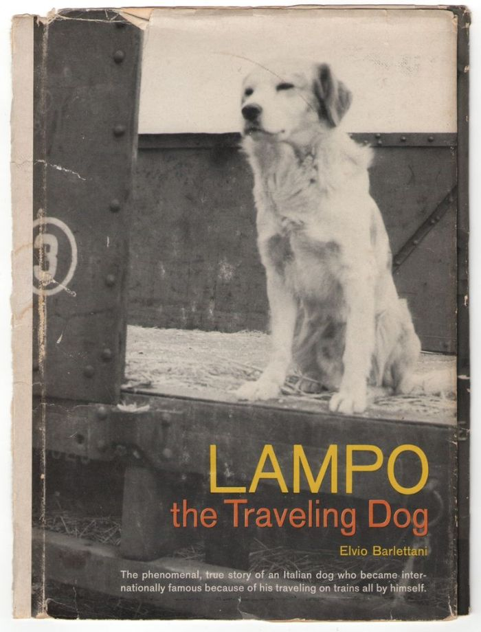 thebook-about-lampo