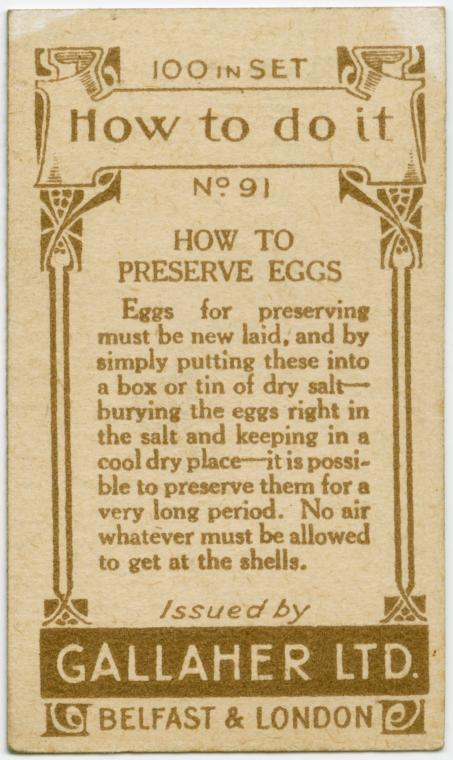 how-to-preserve-eggs2