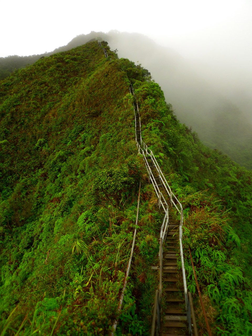 The stairs are divided into 4 or 5 sections with platforms to rest on between each.  unrealhawaii.com