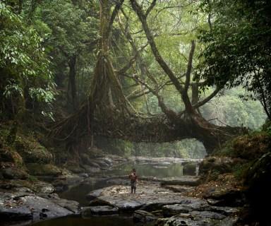 A young fisherman walks under the ancient tree root bridge at Mawlynnong village. (© Amos Chapple)