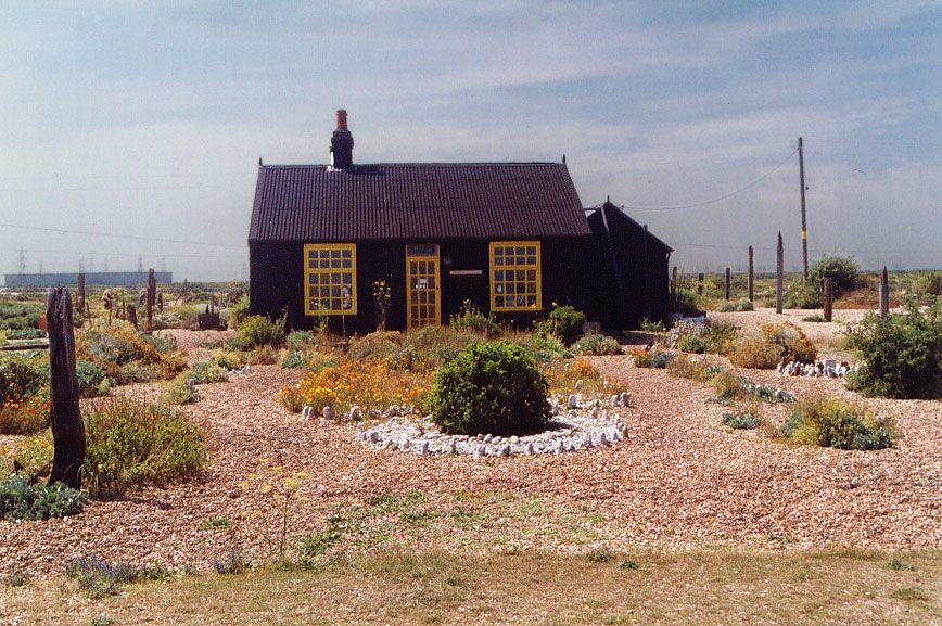 Dungeness9